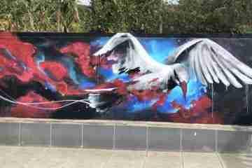 Les street artist Raphaël Gindt et Daniel Mac Lloyd au Cap Vert